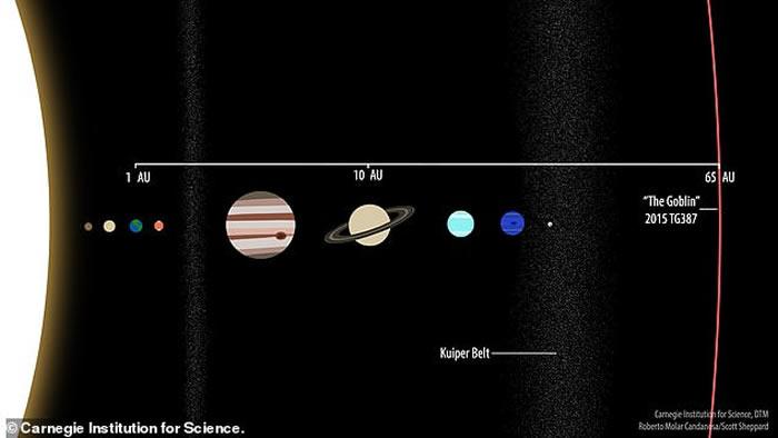 从这张插图中,我们可以看到新发现的2015 TG387(昵称小妖精)和太阳系其它天体公转轨道的比较。 ILLUSTRATION BY CARNEGIE INST