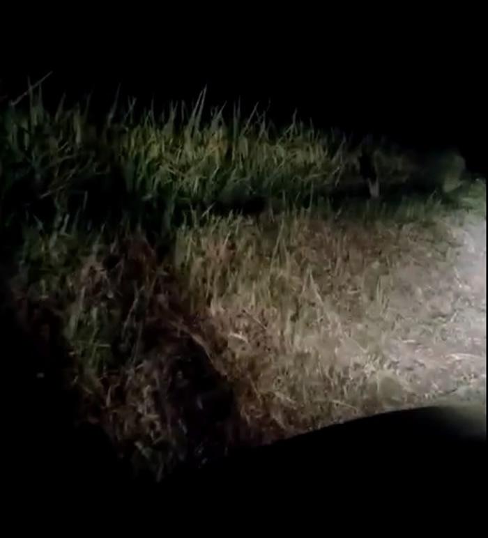 网友称经过老挝的琅南塔时在路边拍摄到身穿白色衣服的单腿幽灵