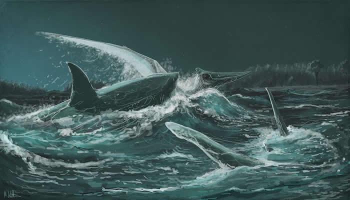 插图描绘一只无齿翼龙惨遭古代角鳞鲨猎捕。 ILLUSTRATION BY MARK WITTON