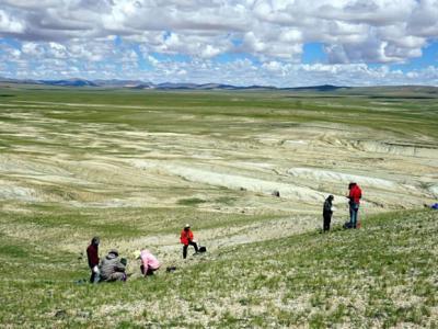 琥珀提示四千万年前西藏曾分布有热带雨林