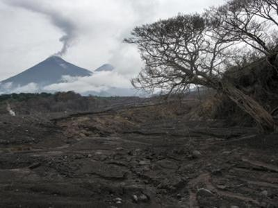 危地马拉富埃戈火山再度爆发 岩浆流长达600米