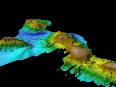 """澳洲科学家在南太平洋海域塔斯曼海海底发现""""失落世界"""""""