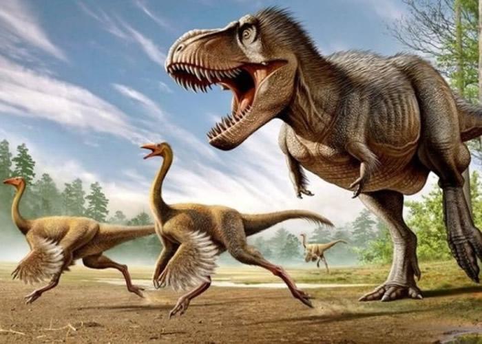 暴龙拥有或能向内及向上旋转的手掌,利用前肢将猎物固定。