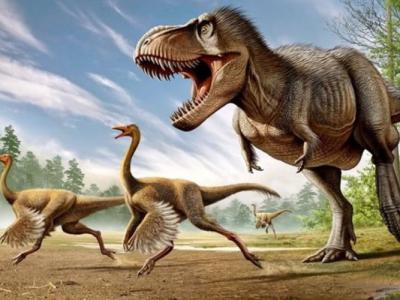 最新研究指暴龙看似弱小的前肢其实大有用途:用于固定猎物方便咬