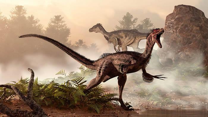 迅猛龙可能拥有和鸟类相似的加强版肺部