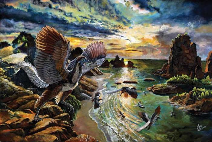古生物学家发现新的鸟类始祖:是鸟类进化链中缺失一环