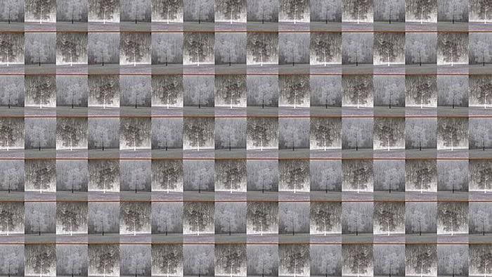 2018年度最佳视错觉大赛:日本数学家杉原厚吉《三种观察角度》夺得第一名