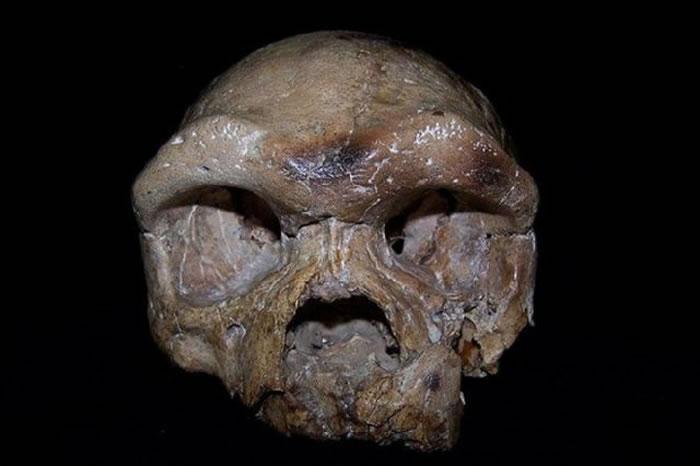 陕西出土的大荔人的颅骨