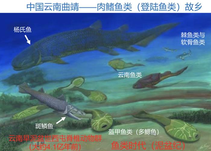 4亿年前云南曲靖水下艺术想象图和位置地图