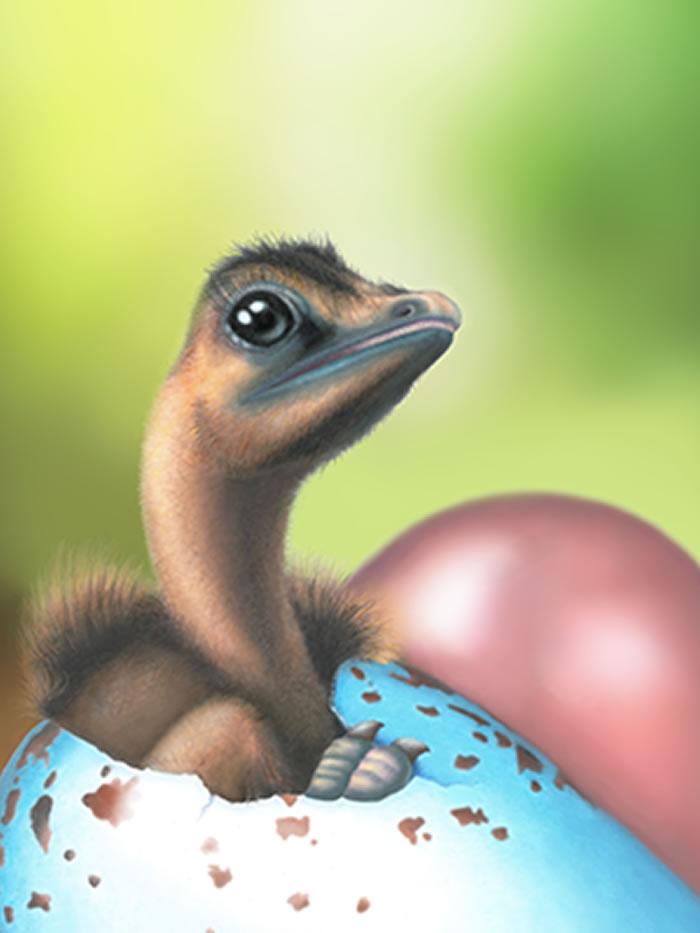 彩色蛋只演化出一次 现代鸟类的蛋壳色素沉着机制源自恐龙