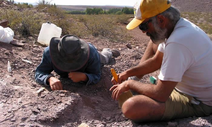 阿根廷内乌肯省发现1.1亿年前食草性恐龙