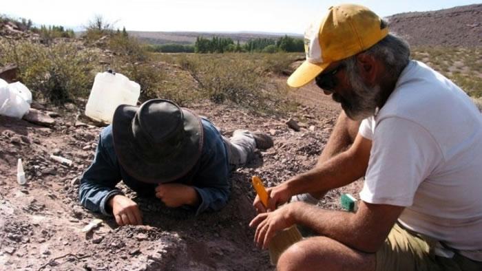 阿根廷巴塔哥尼亚内乌肯发现食草恐龙新物种Lavocatisaurus