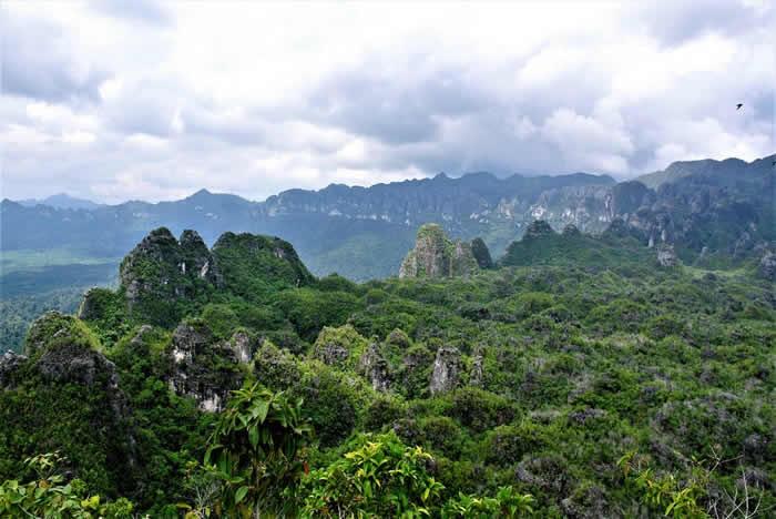 印度尼西亚加里曼丹发现4万年前岩画 目前所知最古老具象艺术品