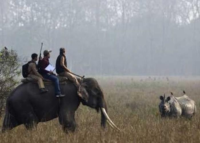 报告指人类对野生动物构成最大威胁。