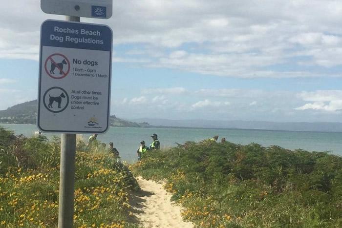 澳洲塔斯马尼亚泳客疑遭魔鬼鱼刺伤腹部身亡