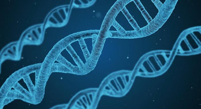 中国南方科技大学科学家贺建奎宣布世界首例基因编辑婴儿诞生