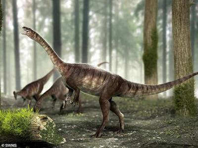 巴西发现2.25亿前长脖子恐龙