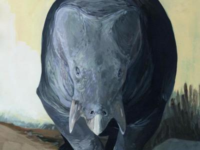 大象大小的哺乳动物近亲二齿兽在晚三叠世出现 当时恐龙才刚进化