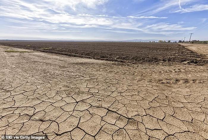 全球粮食系统日益漠视人道主义并且加速气候变化