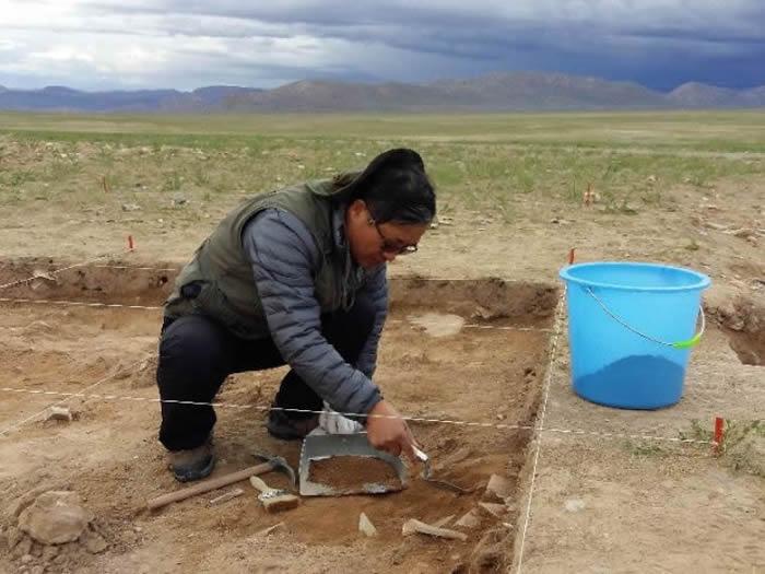 尼阿底遗址最新考古发现将人类首次登上青藏高原的历史推前到4万年前