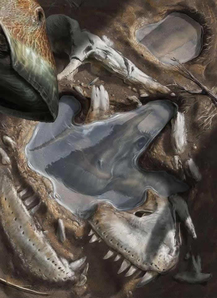 一步之遥 - 在这幅惊人且独特的插画中,意大利艺术家大卫.博纳多纳(Davide Bonadonna)描绘7000万年前蒙古自然世界中的一瞬倒影。 「一群窄吻栉