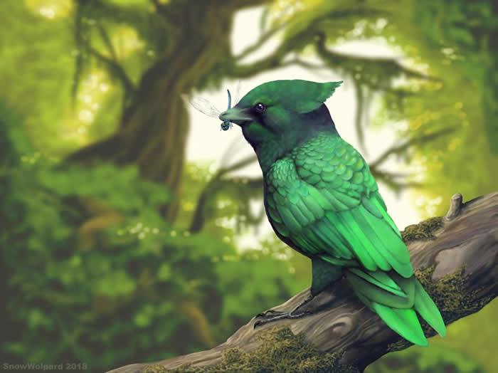 鹏鸟的点心 - 大约1.2亿年前,和鸽子差不多大小的侯氏鹏鸟(Pengornis houi)生活在中国。它是鸟类的原始支系,反鸟类(enantiornithin