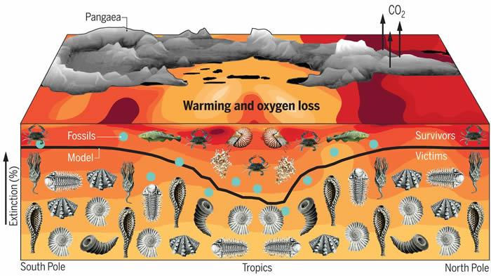 缺氧造成二叠纪末灾难性的物种大灭绝