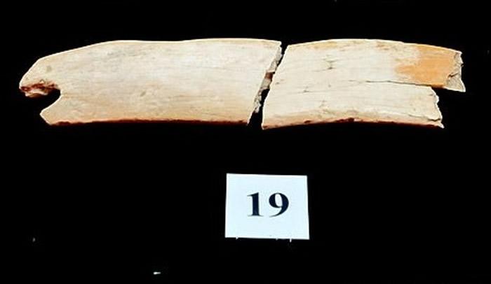 俄罗斯西伯利亚的丹尼索瓦洞穴中发现5万年历史长毛象象牙头冠