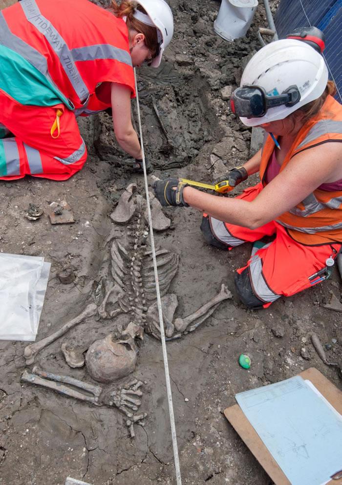 伦敦的考古学家正在研究一名30多岁的成年男性骨骸,他已经在地下静静躺了超过500年。 COURTESY OF MOLA HEADLAND INFRASTRUCT