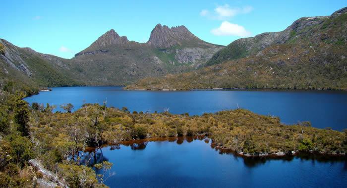 """澳大利亚塔斯马尼亚岛发现可能是世界上最高的树:100.5米的桉树王""""百夫长"""""""