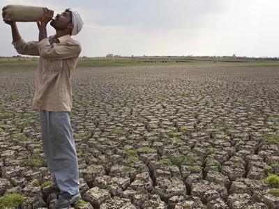 彭博社预测2019年底全球将面临粮食短缺 厄尔尼诺现象将引发灾害