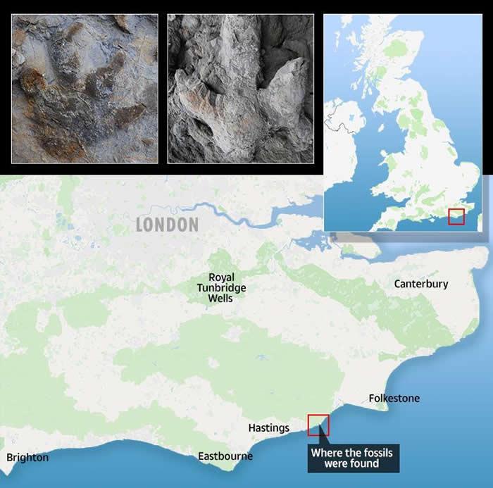 英国东苏塞克斯黑斯廷斯发现85个保存完好的恐龙脚印化石