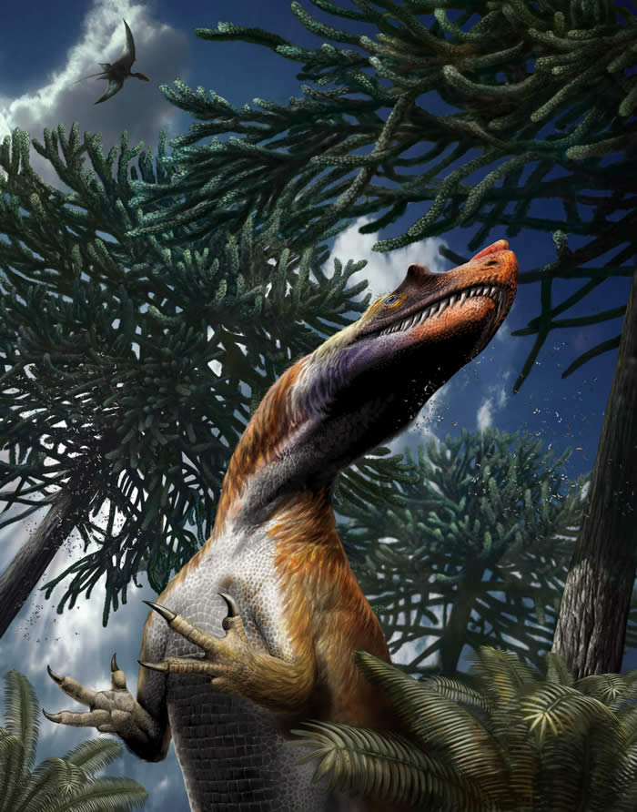 意大利阿尔卑斯山发现已知最古老掠食性恐龙化石——角鼻龙Saltriovenator zanellai