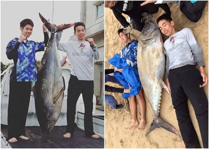 山下(左图及右图左)和碇山(左图及右图右)捕获的吞拿鱼非常巨大。