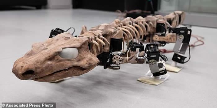 仿真机器人OroBOT展示近3亿年前古生物Orobates pabsti如何移动