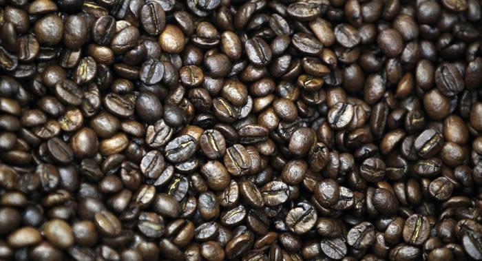 """""""科学警报""""网站:气候变化、疾病传播和砍伐森林导致许多种咖啡树绝种"""