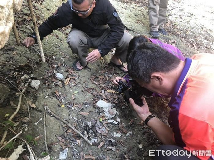 """贪食沼虾!台湾高雄寿山淡水水域发现15CM巨型""""过山虾"""""""