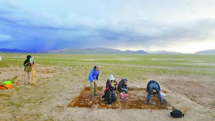 团队成员在尼阿底遗址进行考古发掘