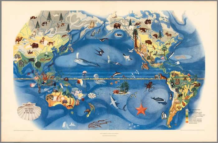 新书《地图上都有》(All over the Map)搜录了各式各样的地图,包括这张展示太平洋地区各种动植物的地图。 这张地图是由米格尔. 珂佛罗皮斯(Migu