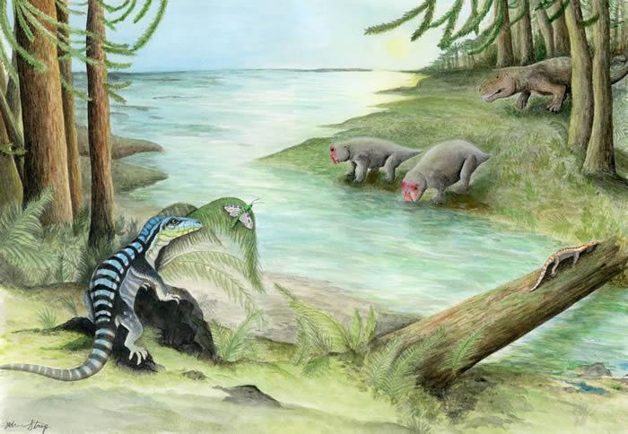 """新发现的恐龙亲属""""南极国王""""Antarctanax shackletoni2.5亿年前在南极洲漫游 以捕食昆虫为生"""