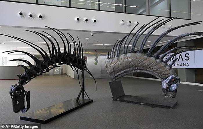 阿根廷巴塔哥尼亚发现叉龙科新品种恐龙Bajadasaurus pronuspinax 靠尖长背刺自卫