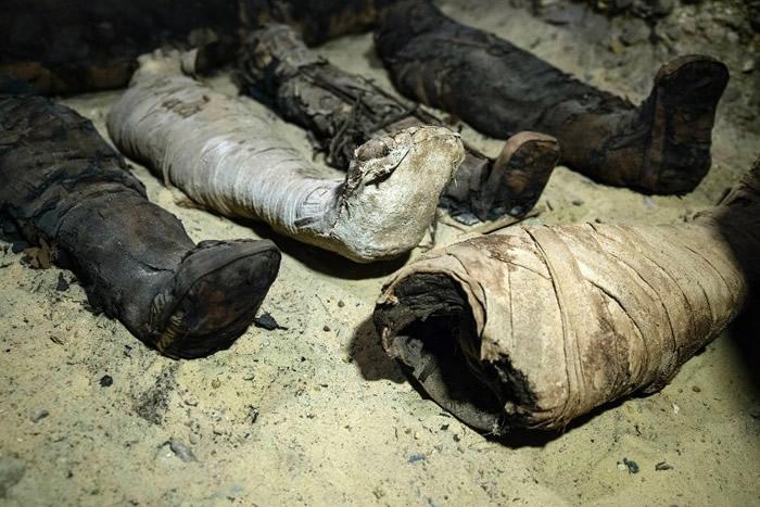埃及明亚省考古遗址发掘出50具2300年前托勒密王朝时代木乃伊 相信来自中产家庭