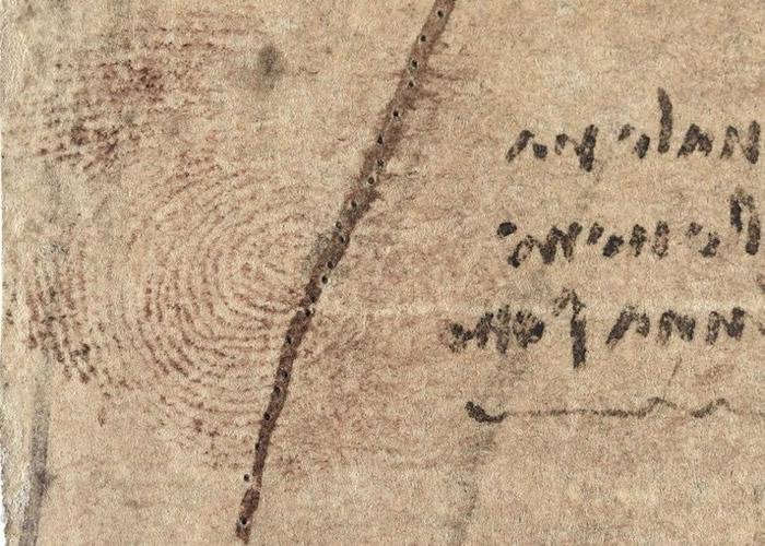 达芬奇于女性解剖图上意外留下指纹。