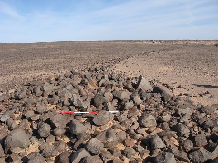 考古学家在西撒哈拉沙漠发现未知文明的痕迹