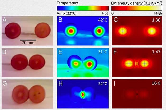 微波炉中两颗葡萄会变火球?科学家炸了12台微波炉终解多年谜题!