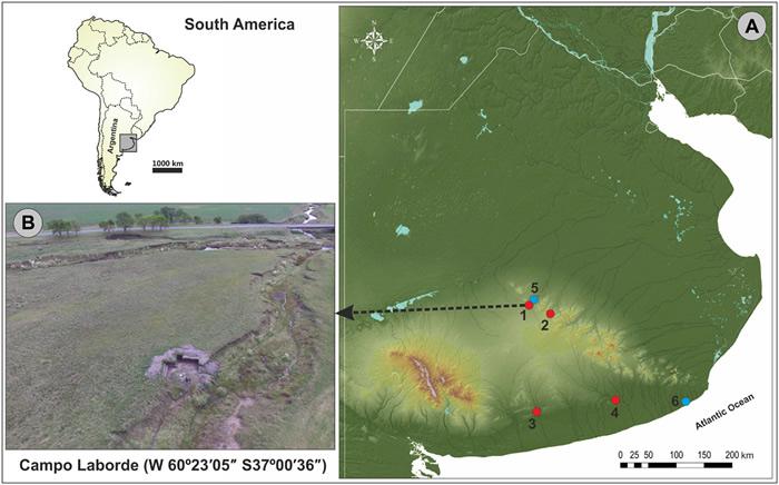 阿根廷彭巴草原发现的巨型地懒化石提供人类与