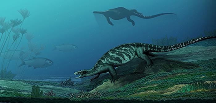 中国始喙龟生态复原图(陈瑜 绘)