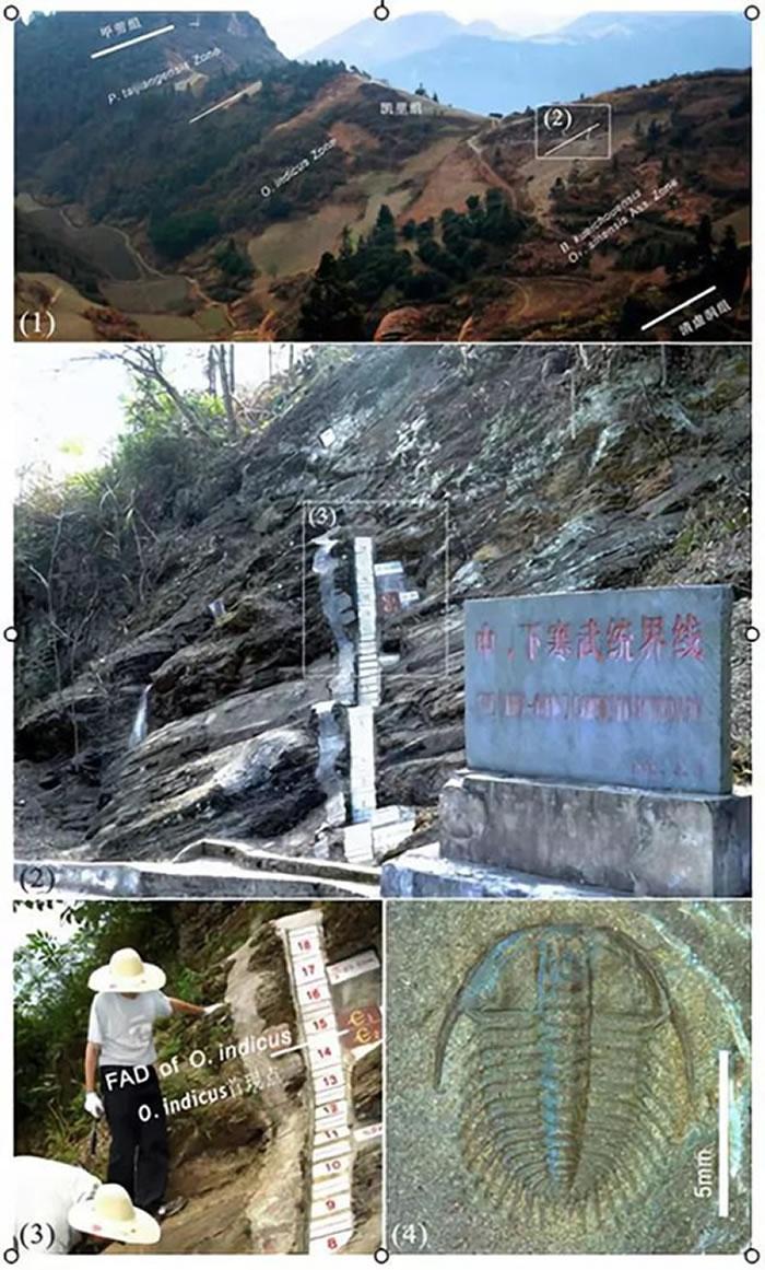 贵州剑河寒武系苗岭统及乌溜阶层型剖面和点位
