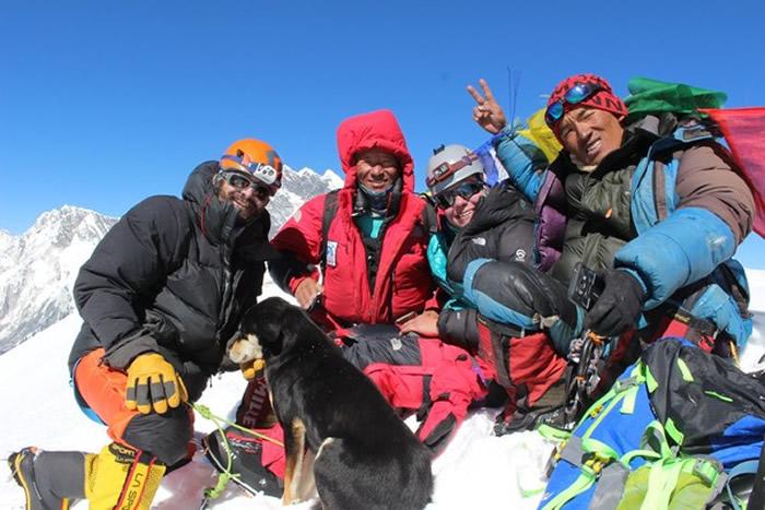流浪狗梅乐(Mera)竟跟随收留它的登山队成功征服海拔7129公尺的喜马拉雅巴鲁特斯峰
