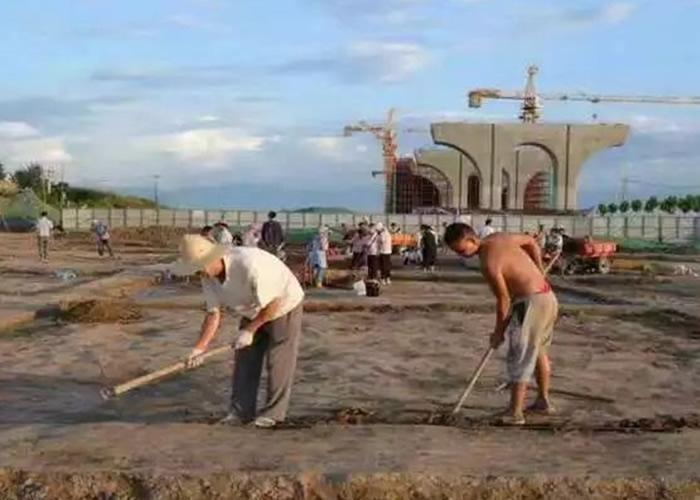 工作人员在遗址现场小心挖掘。